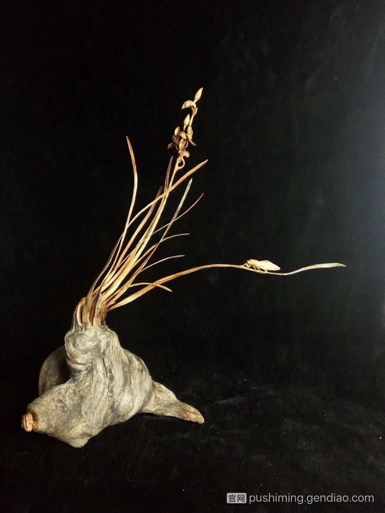 那些长得很美的兰花根雕