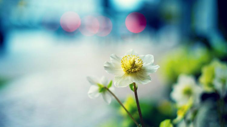 安静,是一种美,是一种境界