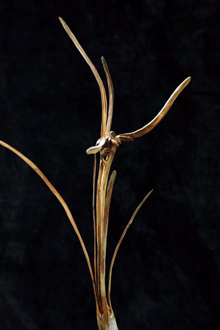 叶小明的花鸟虫鱼巧雕系列作品