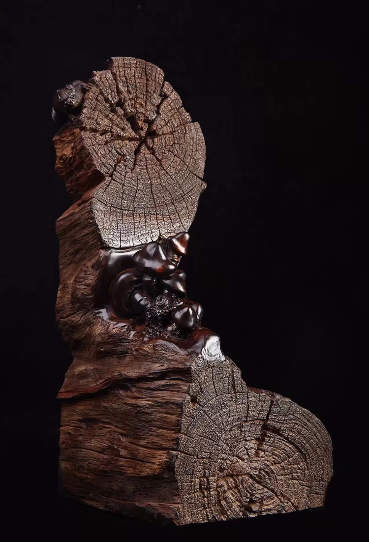 5种柬埔寨盛产的特级木材!中柬老铁关系好,文化输出少不了!