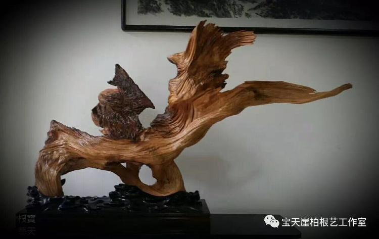 吴民:崖柏•生命•根的艺术