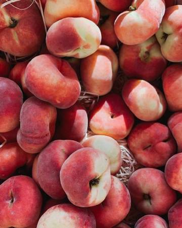 水果🍎🍒🍓🍇🍅🍊🍋