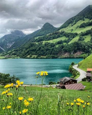 瑞士的夏天🍃 ins:swissmountainview