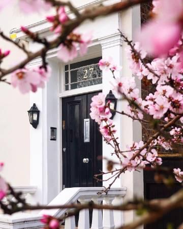 粉色春日气息